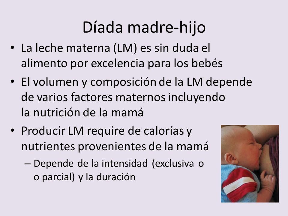 Díada madre-hijo La leche materna (LM) es sin duda el alimento por excelencia para los bebés El volumen y composición de la LM depende de varios facto
