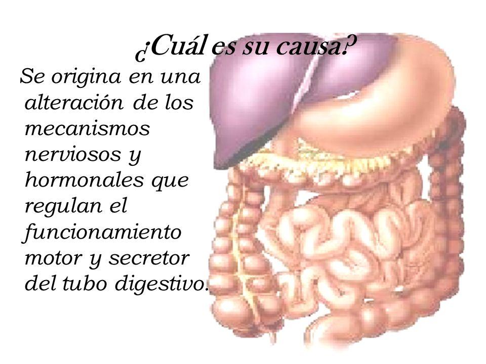 ¿Cuál es su causa? Se origina en una alteración de los mecanismos nerviosos y hormonales que regulan el funcionamiento motor y secretor del tubo diges