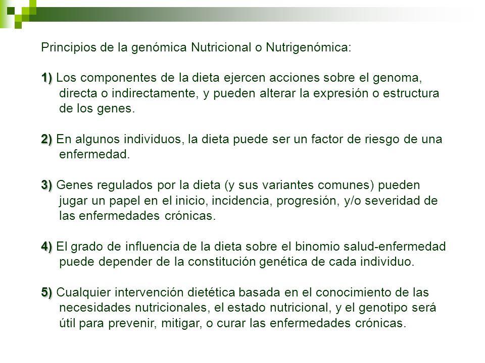 Principios de la genómica Nutricional o Nutrigenómica: 1) 1) Los componentes de la dieta ejercen acciones sobre el genoma, directa o indirectamente, y