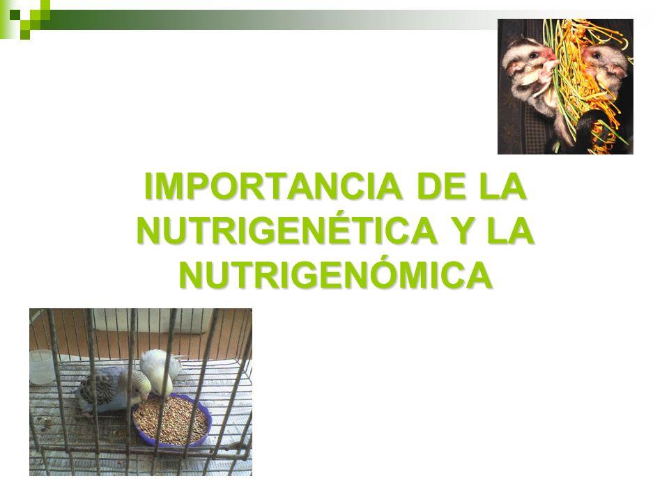 IMPORTANCIA DE LA NUTRIGENÉTICA Y LA NUTRIGENÓMICA