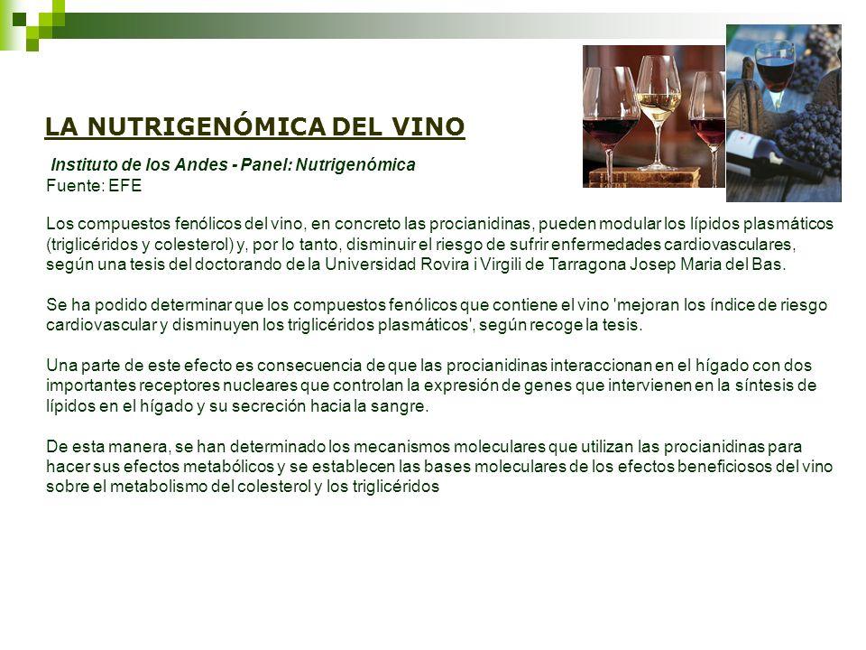 LA NUTRIGENÓMICA DEL VINO Instituto de los Andes - Panel: Nutrigenómica Fuente: EFE Los compuestos fenólicos del vino, en concreto las procianidinas,
