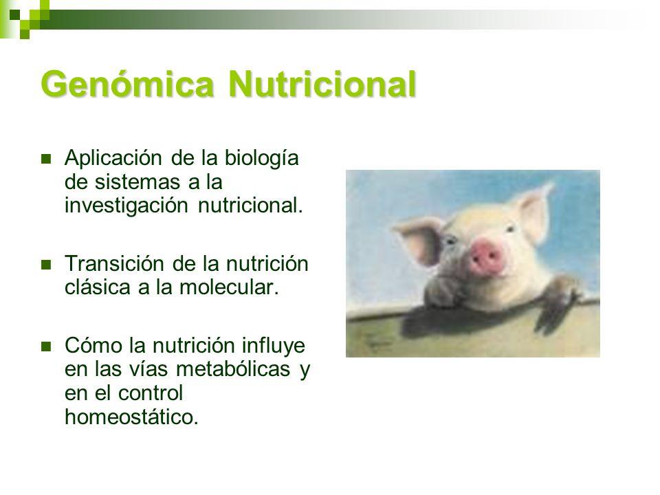 Genómica Nutricional Aplicación de la biología de sistemas a la investigación nutricional. Transición de la nutrición clásica a la molecular. Cómo la