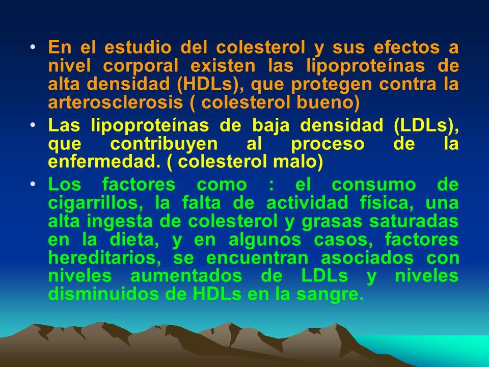 En el estudio del colesterol y sus efectos a nivel corporal existen las lipoproteínas de alta densidad (HDLs), que protegen contra la arterosclerosis