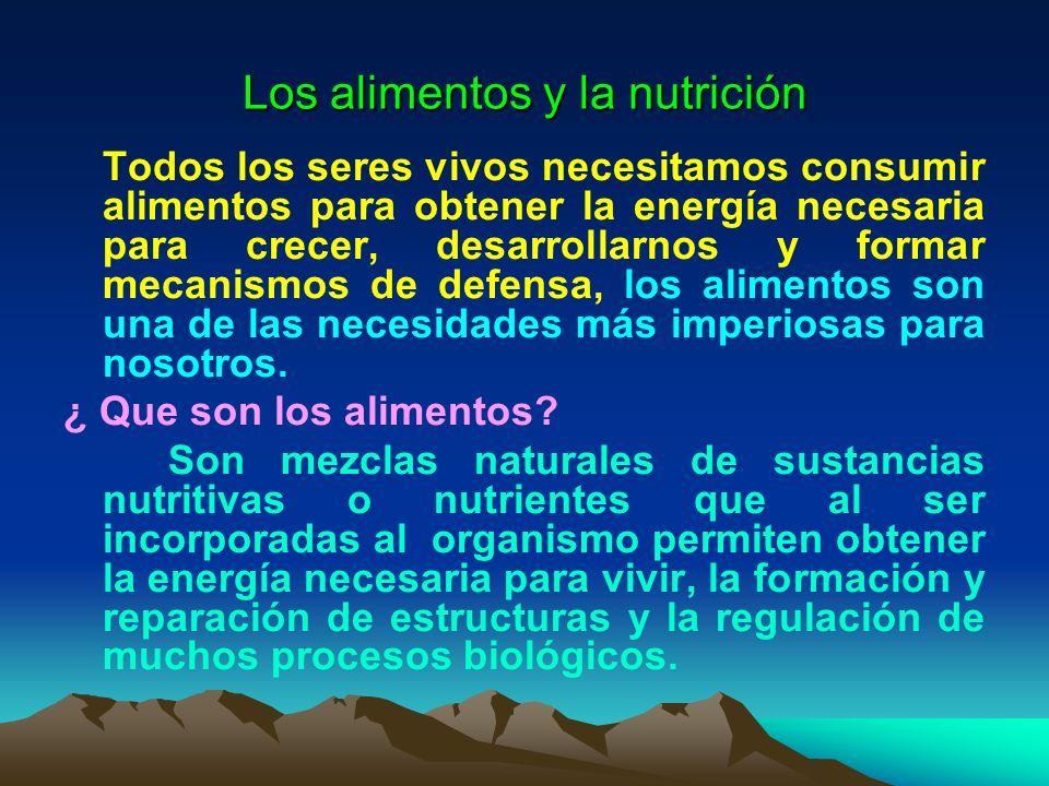 Los alimentos y la nutrición Todos los seres vivos necesitamos consumir alimentos para obtener la energía necesaria para crecer, desarrollarnos y form