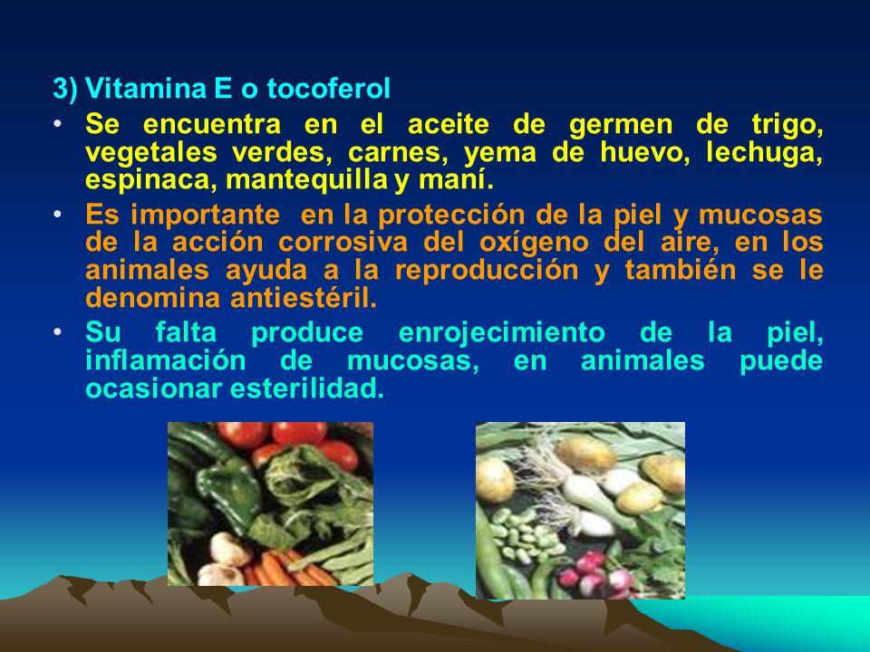 3)Vitamina E o tocoferol Se encuentra en el aceite de germen de trigo, vegetales verdes, carnes, yema de huevo, lechuga, espinaca, mantequilla y maní.