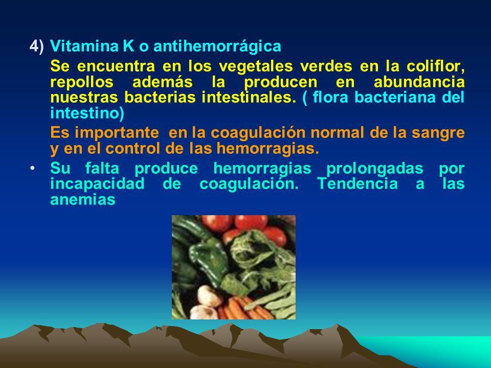 4)Vitamina K o antihemorrágica Se encuentra en los vegetales verdes en la coliflor, repollos además la producen en abundancia nuestras bacterias intes