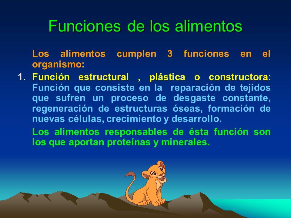 Funciones de los alimentos Los alimentos cumplen 3 funciones en el organismo: 1.Función estructural, plástica o constructora: Función que consiste en