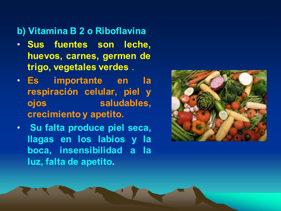 b) Vitamina B 2 o Riboflavina Sus fuentes son leche, huevos, carnes, germen de trigo, vegetales verdes. Es importante en la respiración celular, piel