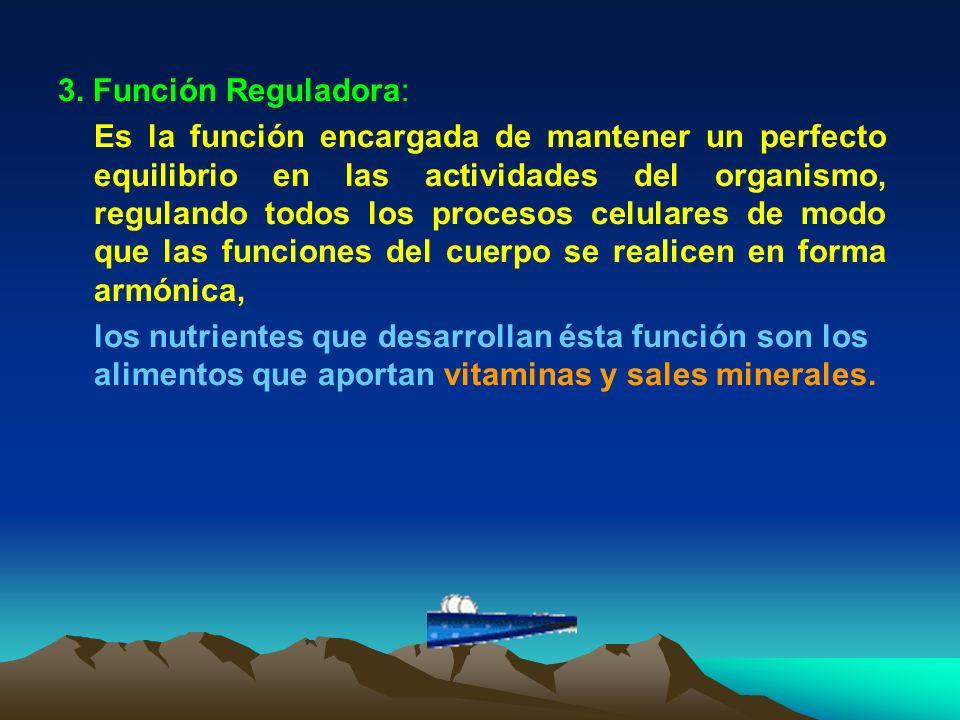 3. Función Reguladora: Es la función encargada de mantener un perfecto equilibrio en las actividades del organismo, regulando todos los procesos celul