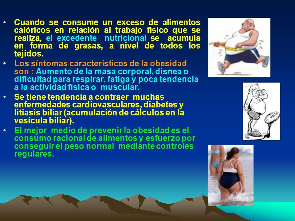 Cuando se consume un exceso de alimentos calóricos en relación al trabajo físico que se realiza, el excedente nutricional se acumula en forma de grasa