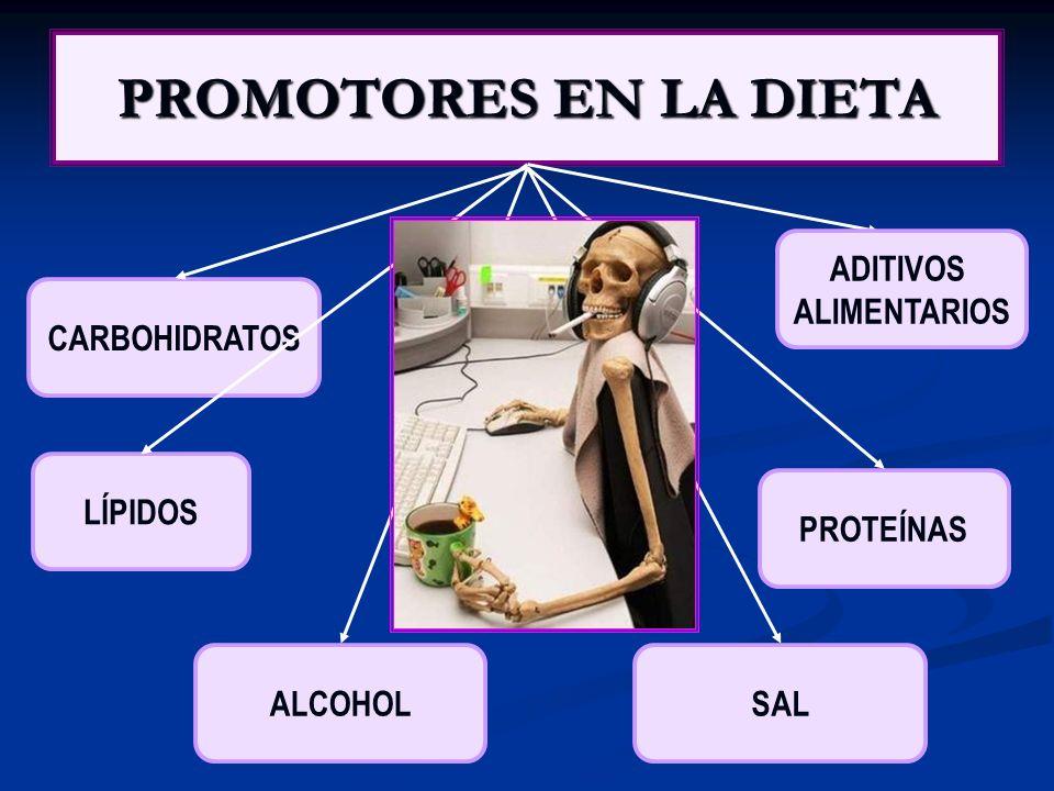 PROMOTORES EN LA DIETA CARBOHIDRATOS LÍPIDOS PROTEÍNAS ALCOHOLSAL ADITIVOS ALIMENTARIOS