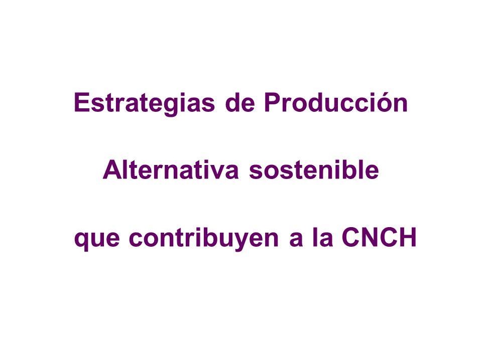 Estrategias de Producción Alternativa sostenible que contribuyen a la CNCH
