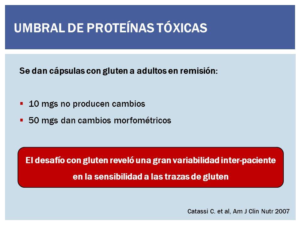 UMBRAL DE PROTEÍNAS TÓXICAS Se dan cápsulas con gluten a adultos en remisión: 10 mgs no producen cambios 50 mgs dan cambios morfométricos Catassi C.