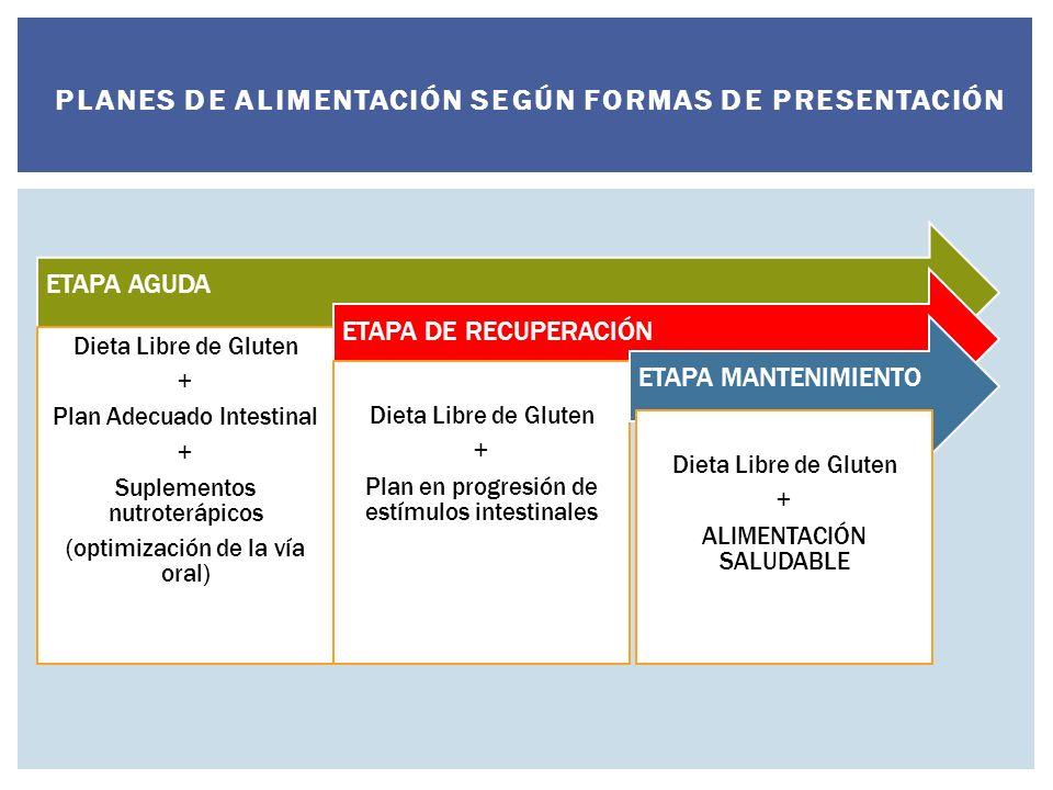 ETAPA AGUDA Dieta Libre de Gluten + Plan Adecuado Intestinal + Suplementos nutroterápicos (optimización de la vía oral) ETAPA DE RECUPERACIÓN Dieta Libre de Gluten + Plan en progresión de estímulos intestinales ETAPA MANTENIMIENTO Dieta Libre de Gluten + ALIMENTACIÓN SALUDABLE PLANES DE ALIMENTACIÓN SEGÚN FORMAS DE PRESENTACIÓN