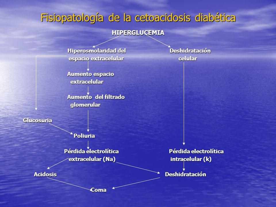 Fisiopatología de la cetoacidosis diabética HIPERGLUCEMIA Hiperosmolaridad del Deshidratación Hiperosmolaridad del Deshidratación espacio extracelular