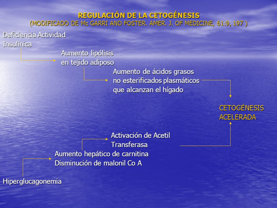 REGULACIÓN DE LA CETOGÉNESIS (MODIFICADO DE Mc GARRI AND FOSTER. AMER. J. OF MEDICINE, 61:9, 197 ) Deficiencia Actividad Insulínica Aumento lipólisis