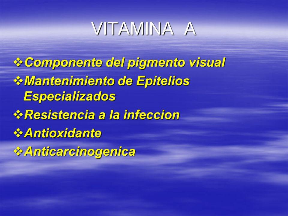 VITAMINA A Componente del pigmento visual Componente del pigmento visual Mantenimiento de Epitelios Especializados Mantenimiento de Epitelios Especial