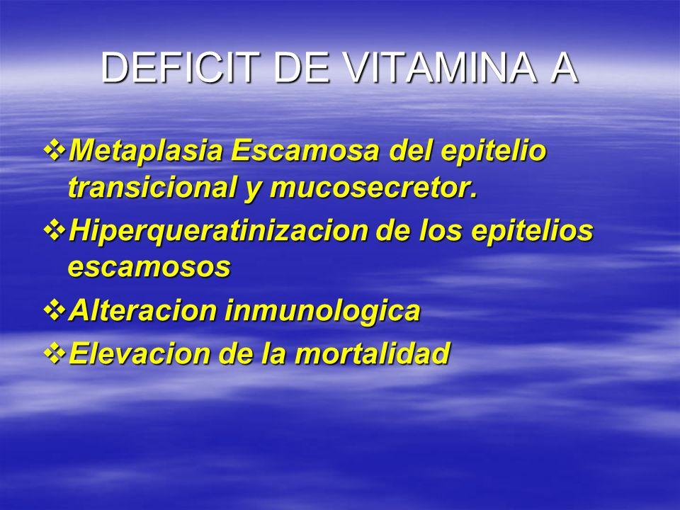 DEFICIT DE VITAMINA A Metaplasia Escamosa del epitelio transicional y mucosecretor. Metaplasia Escamosa del epitelio transicional y mucosecretor. Hipe