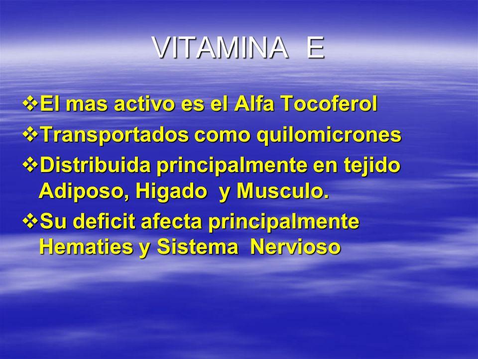 VITAMINA E El mas activo es el Alfa Tocoferol El mas activo es el Alfa Tocoferol Transportados como quilomicrones Transportados como quilomicrones Dis