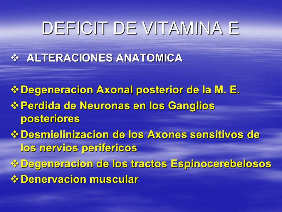 DEFICIT DE VITAMINA E ALTERACIONES ANATOMICA ALTERACIONES ANATOMICA Degeneracion Axonal posterior de la M. E. Degeneracion Axonal posterior de la M. E