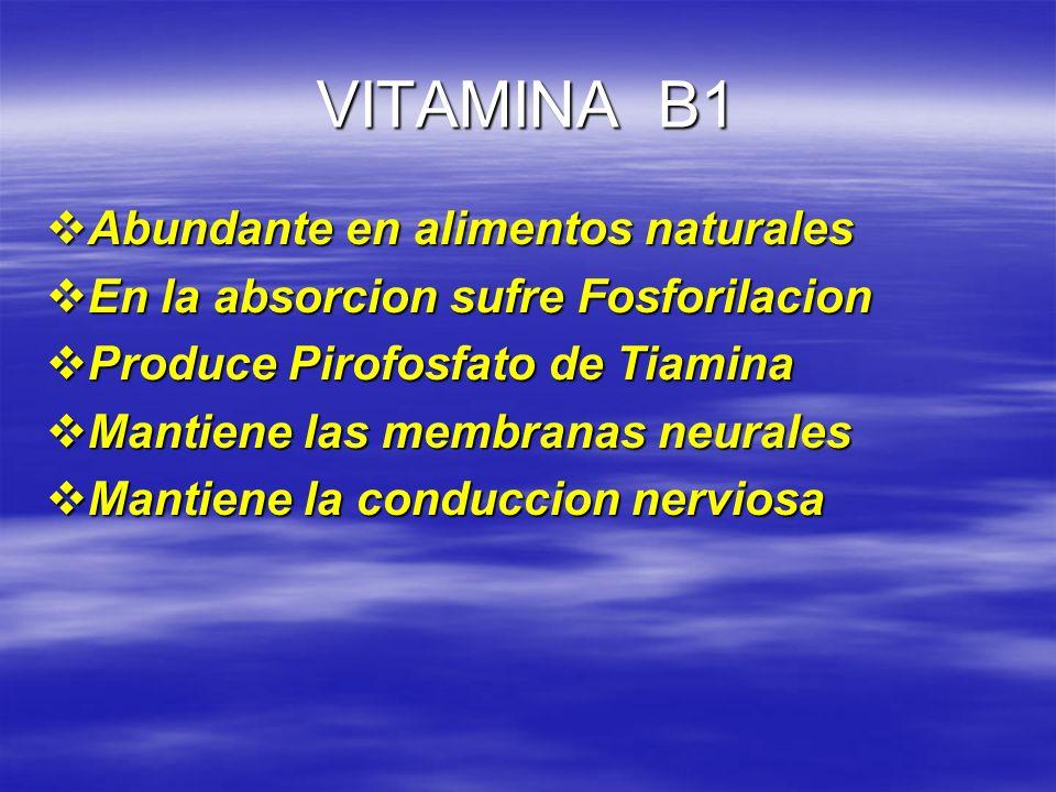 VITAMINA B1 Abundante en alimentos naturales Abundante en alimentos naturales En la absorcion sufre Fosforilacion En la absorcion sufre Fosforilacion