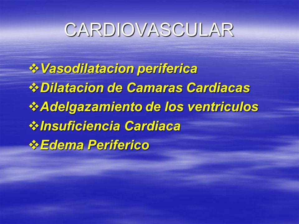 CARDIOVASCULAR Vasodilatacion periferica Vasodilatacion periferica Dilatacion de Camaras Cardiacas Dilatacion de Camaras Cardiacas Adelgazamiento de l