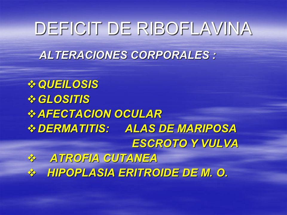DEFICIT DE RIBOFLAVINA ALTERACIONES CORPORALES : ALTERACIONES CORPORALES : QUEILOSIS QUEILOSIS GLOSITIS GLOSITIS AFECTACION OCULAR AFECTACION OCULAR D