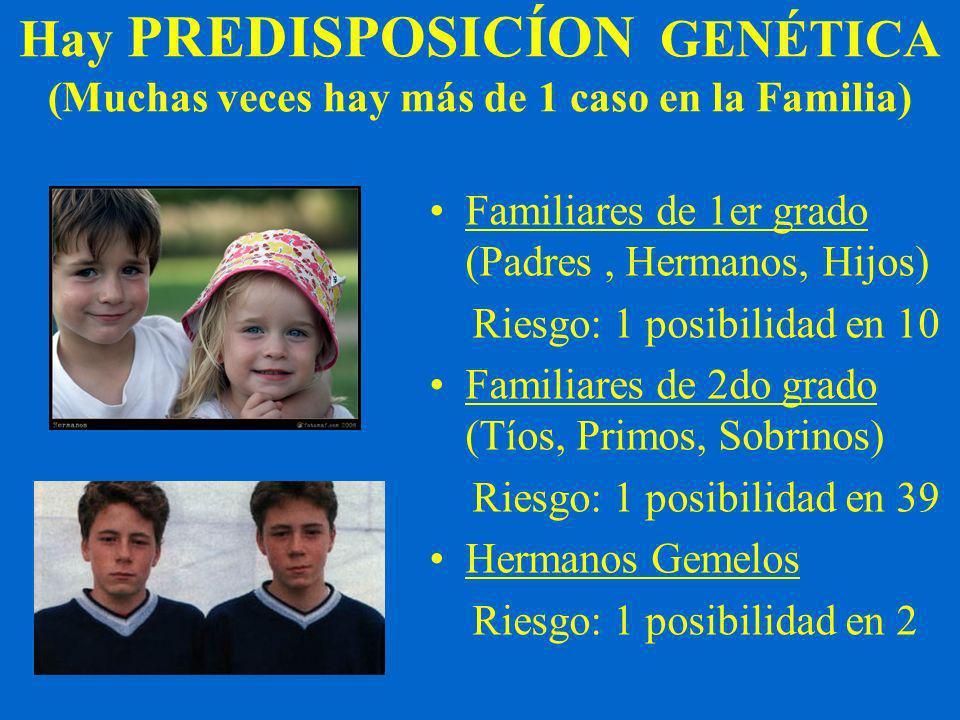 Hay PREDISPOSICÍON GENÉTICA (Muchas veces hay más de 1 caso en la Familia) Familiares de 1er grado (Padres, Hermanos, Hijos) Riesgo: 1 posibilidad en 10 Familiares de 2do grado (Tíos, Primos, Sobrinos) Riesgo: 1 posibilidad en 39 Hermanos Gemelos Riesgo: 1 posibilidad en 2