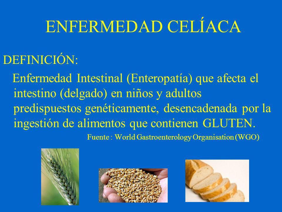 DEFINICIÓN: Enfermedad Intestinal (Enteropatía) que afecta el intestino (delgado) en niños y adultos predispuestos genéticamente, desencadenada por la ingestión de alimentos que contienen GLUTEN.