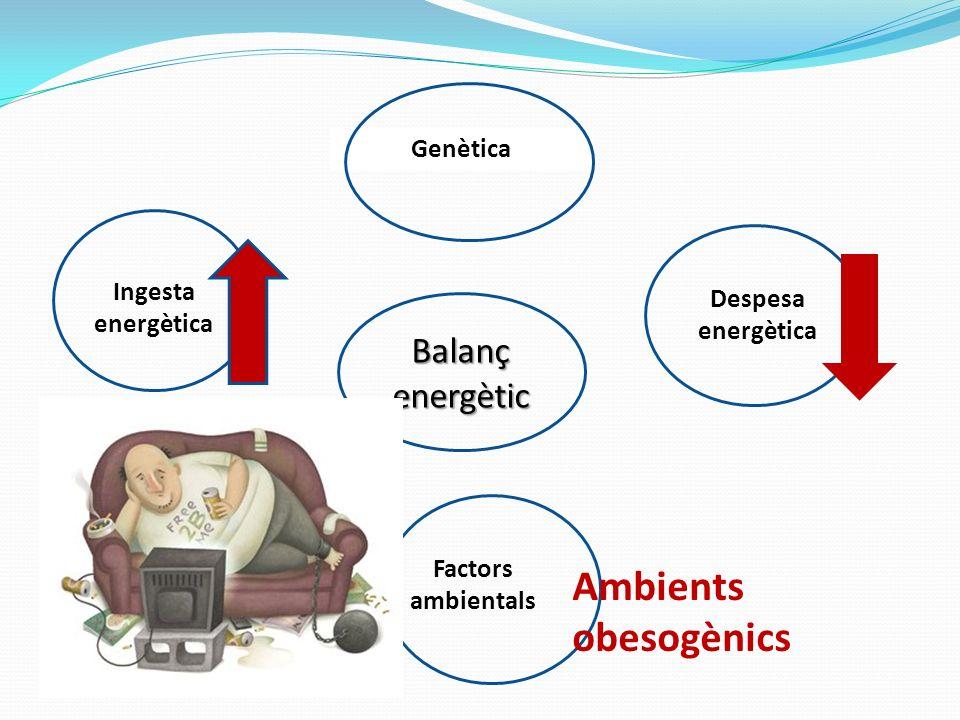 Ingesta energètica Genètica Despesa energètica Factors ambientals Balanç energètic Ambients obesogènics