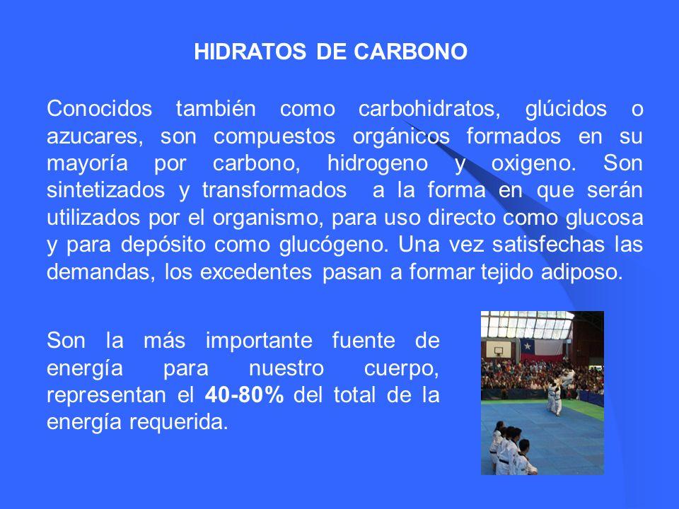 HIDRATOS DE CARBONO Conocidos también como carbohidratos, glúcidos o azucares, son compuestos orgánicos formados en su mayoría por carbono, hidrogeno