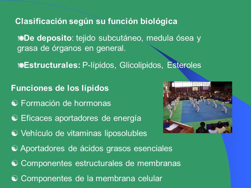 Clasificación según su función biológica De deposito: tejido subcutáneo, medula ósea y grasa de órganos en general. Estructurales: P-lípidos, Glicolip