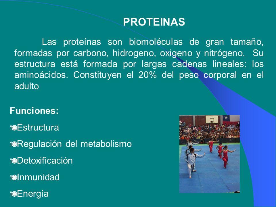 PROTEINAS Las proteínas son biomoléculas de gran tamaño, formadas por carbono, hidrogeno, oxigeno y nitrógeno. Su estructura está formada por largas c