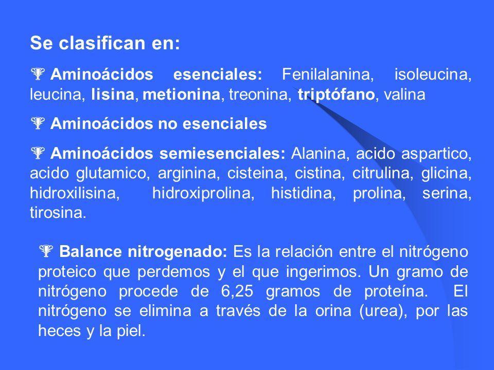 Se clasifican en: Aminoácidos esenciales: Fenilalanina, isoleucina, leucina, lisina, metionina, treonina, triptófano, valina Aminoácidos no esenciales