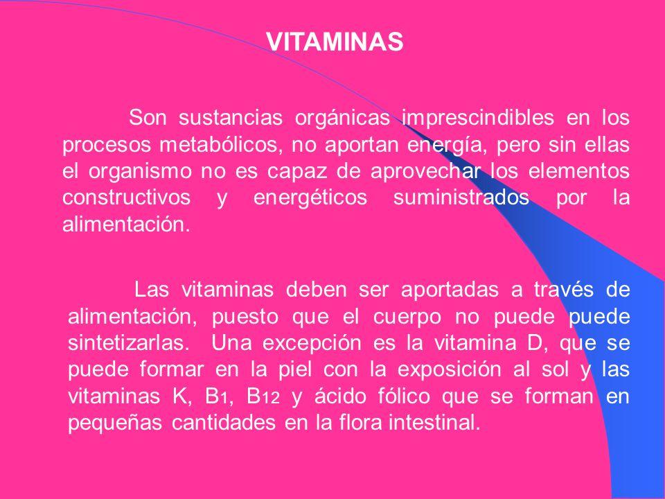 VITAMINAS Son sustancias orgánicas imprescindibles en los procesos metabólicos, no aportan energía, pero sin ellas el organismo no es capaz de aprovec