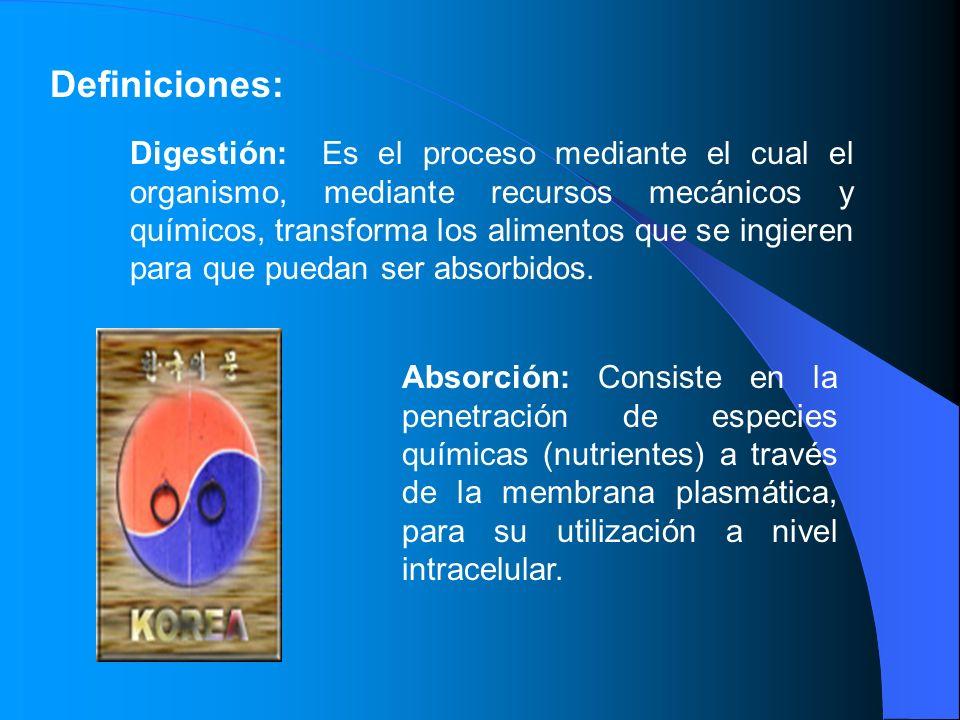 Definiciones: Digestión: Es el proceso mediante el cual el organismo, mediante recursos mecánicos y químicos, transforma los alimentos que se ingieren