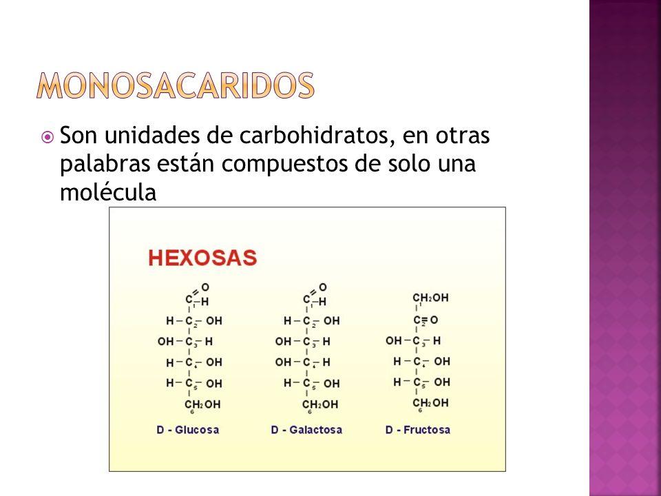 Son unidades de carbohidratos, en otras palabras están compuestos de solo una molécula