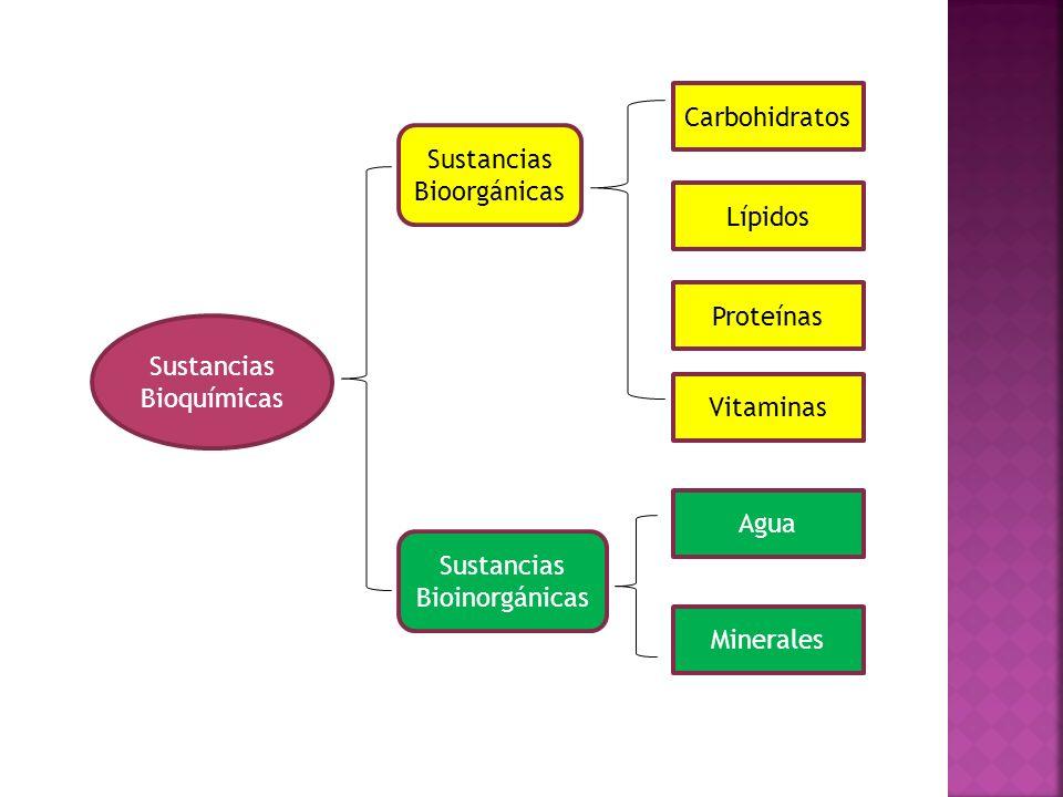 Los ácidos grasos de origen natural, como el ácidos esteárico, tienen casi siempre un número par de átomos de carbono.