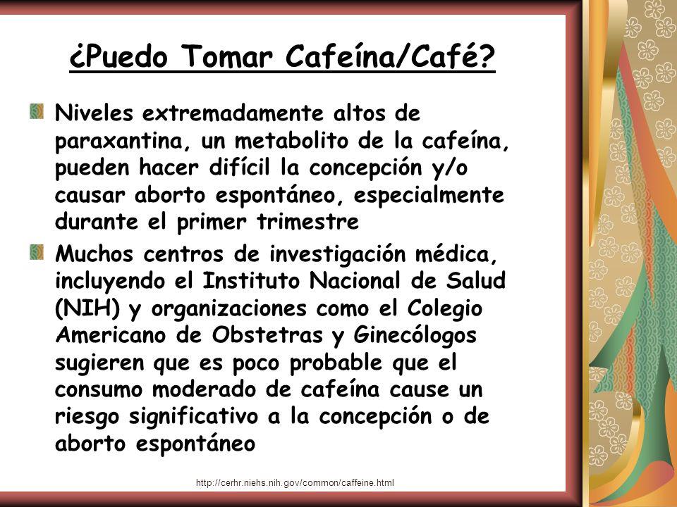 ¿Puedo Tomar Cafeína/Café? Niveles extremadamente altos de paraxantina, un metabolito de la cafeína, pueden hacer difícil la concepción y/o causar abo