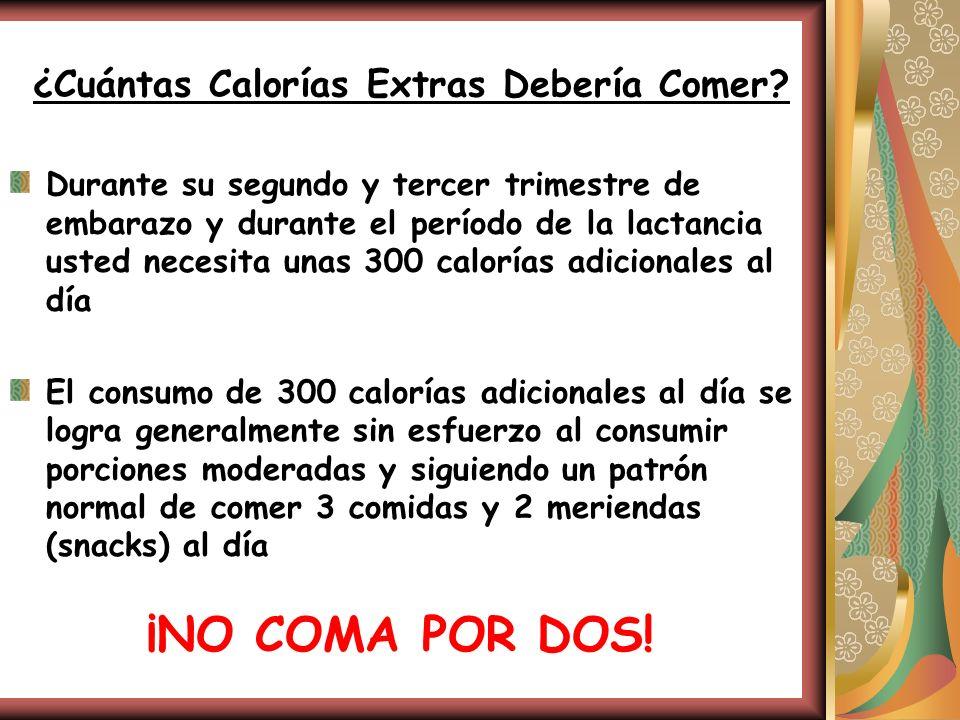 ¿Cuántas Calorías Extras Debería Comer? Durante su segundo y tercer trimestre de embarazo y durante el período de la lactancia usted necesita unas 300