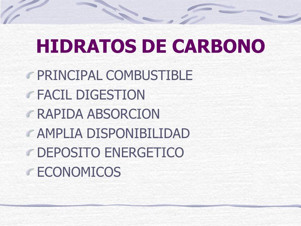 HIDRATOS DE CARBONO PRINCIPAL COMBUSTIBLE FACIL DIGESTION RAPIDA ABSORCION AMPLIA DISPONIBILIDAD DEPOSITO ENERGETICO ECONOMICOS