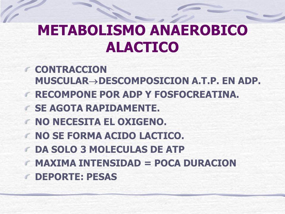 METABOLISMO ANAEROBICO ALACTICO CONTRACCION MUSCULAR DESCOMPOSICION A.T.P. EN ADP. RECOMPONE POR ADP Y FOSFOCREATINA. SE AGOTA RAPIDAMENTE. NO NECESIT