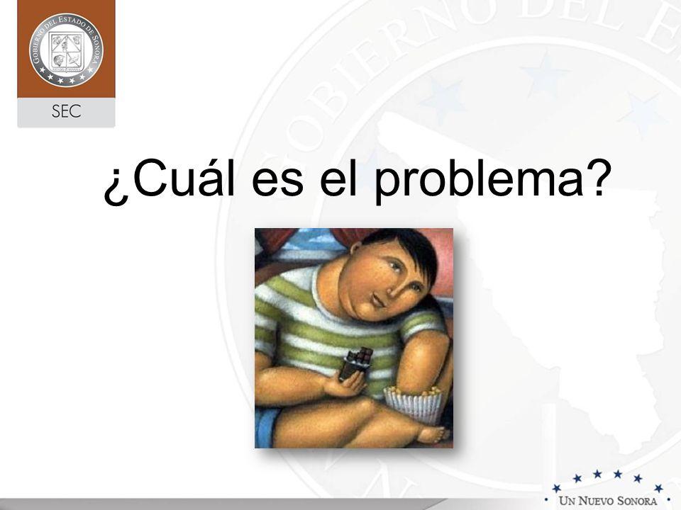 Alimentación Rivera, et al.