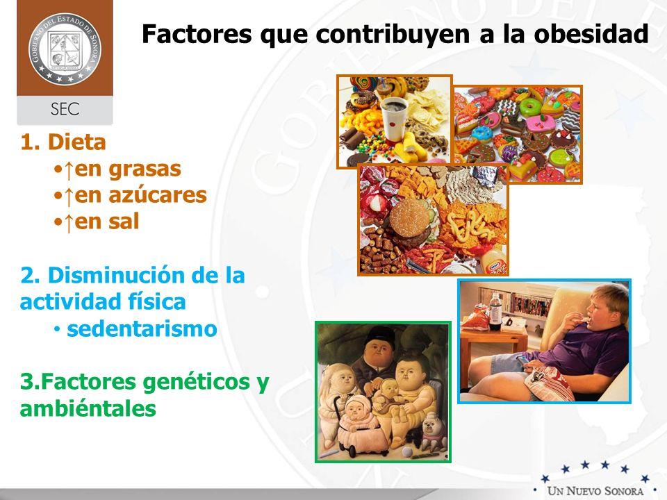 Factores que contribuyen a la obesidad 1. Dieta en grasas en azúcares en sal 2. Disminución de la actividad física sedentarismo 3.Factores genéticos y