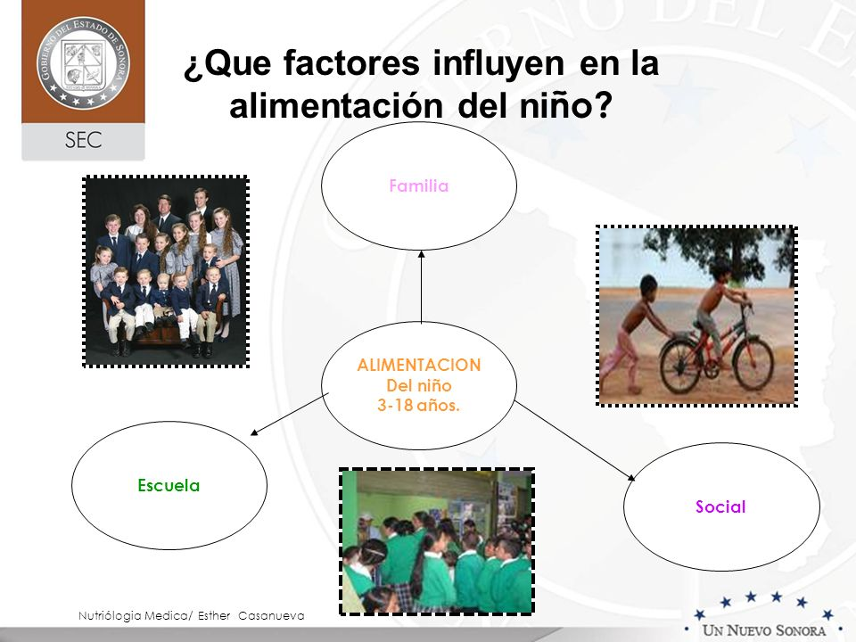 ALIMENTACION Del niño 3-18 años. Familia Escuela Social Nutriólogia Medica/ Esther Casanueva ¿Que factores influyen en la alimentación del ni ño?