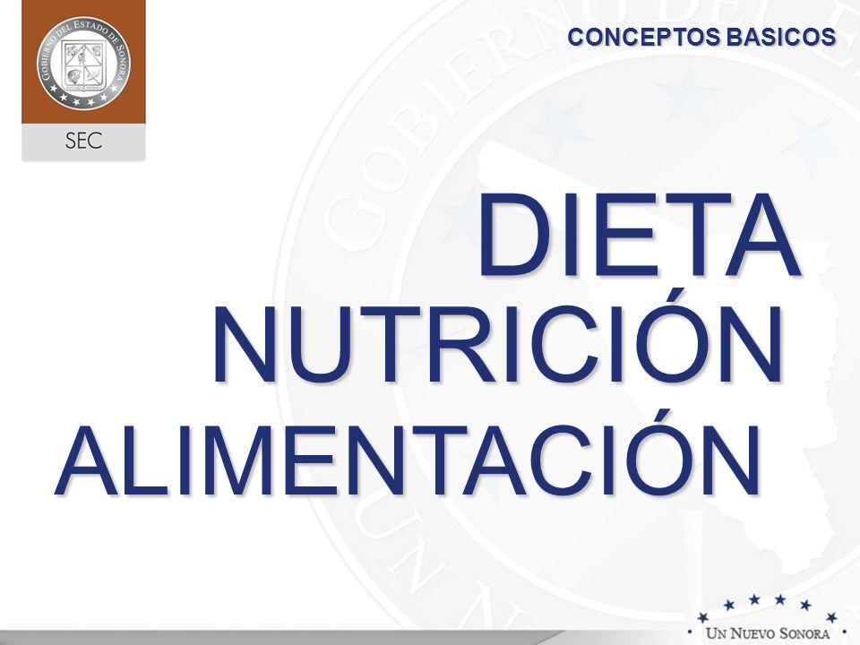 NUTRICIÓN ALIMENTACIÓN DIETA CONCEPTOS BASICOS