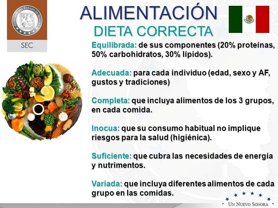 DIETA CORRECTA Equilibrada: de sus componentes (20% proteínas, 50% carbohidratos, 30% lípidos). Adecuada: para cada individuo (edad, sexo y AF, gustos