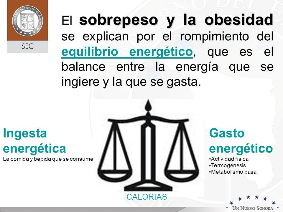 sobrepeso y la obesidad El sobrepeso y la obesidad se explican por el rompimiento del equilibrio energético, que es el balance entre la energía que se