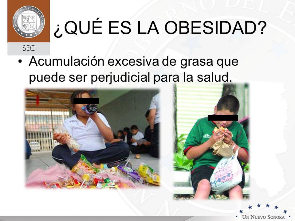 Fuente: www.cun.es ¿QUÉ FACTORES INFLUYEN EN LA OBESIDAD?