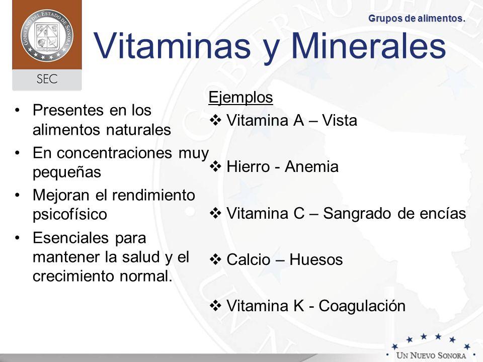 Vitaminas y Minerales Presentes en los alimentos naturales En concentraciones muy pequeñas Mejoran el rendimiento psicofísico Esenciales para mantener